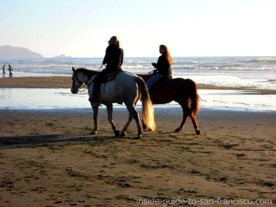 fort funston, san francisco, riding horses