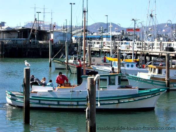 fishermans wharf san francisco marina fishing boats