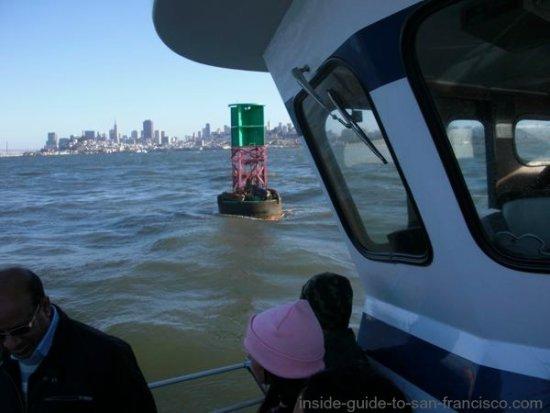 san francisco bay cruises, sea lions on a buoy