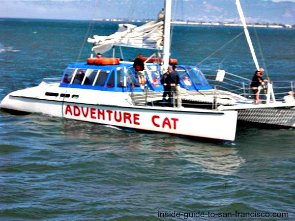 san francisco bay cruises, catamaran
