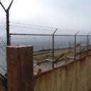 alcatraz yard thumbnail