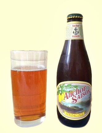 anchor steam saison spring ale bottle and glass