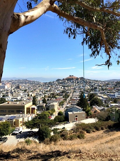 half of a rope swing at billy goat hill, san francisco
