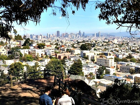 view of downtown san francisco from billy goat hill