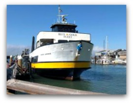 blue and gold ferry thumbnail