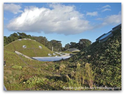 living roof, california academy of sciences