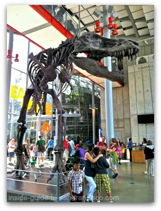 california academy of sciences, entrance, t rex