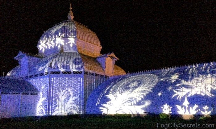 Winter lights show, SF Conservatory of Flowers