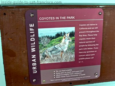 coyote warning sign, stow lake, golden gate park