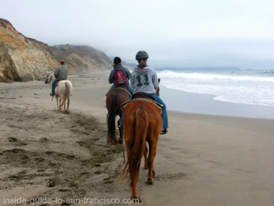 horses on the beach, san francisco activities