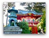 japanese tea garden san francisco thumbnail