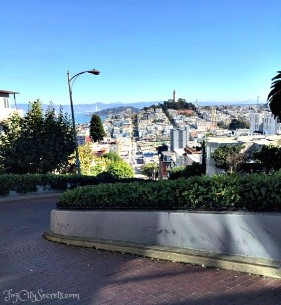 driving down lombard street in a go car, san francisco city view