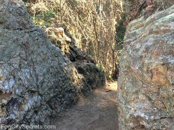 fairy gates trail, mount sutro