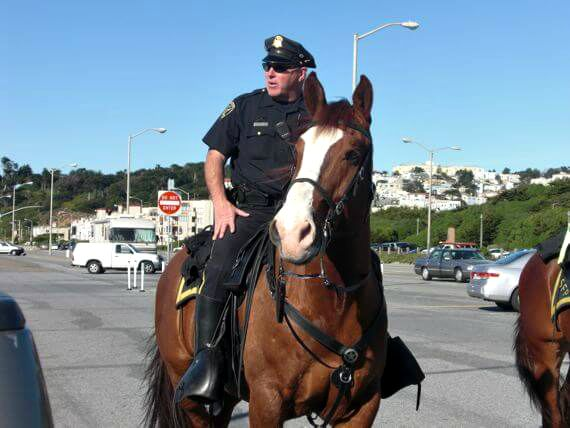 mounted police, san francisco, ocean beach parking lot