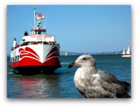 red and white ferry thumbnail