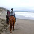 horseback riding thumbnail