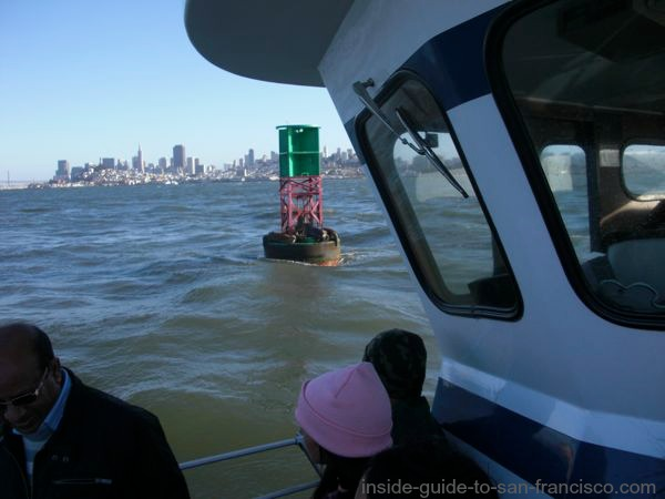 san francisco bay cruises, sea lions on a buoy