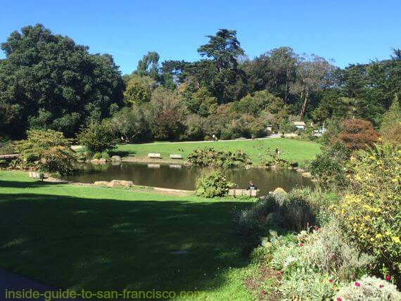 botanical gardens san francisco, waterfowl pond