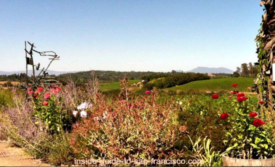sonoma county wineries, iron horse vineyards