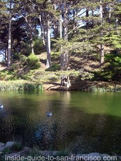 stow lake, golden gate park
