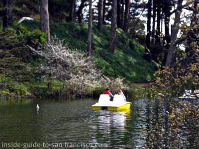 stow lake, paddle boat, golden gate park