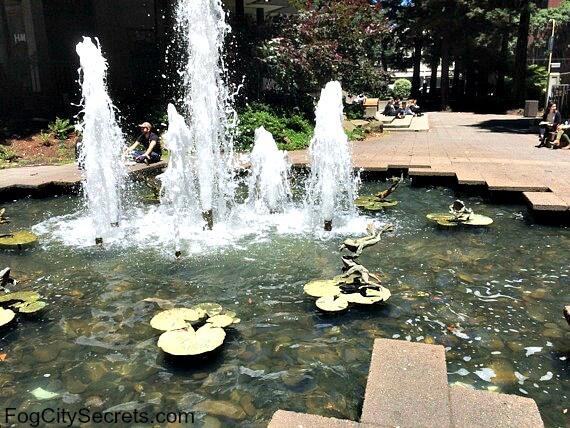 transamerica redwood park, frog fountain