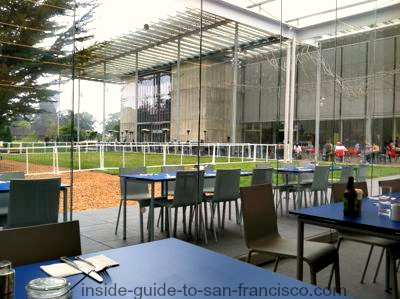terrace cafe, academy of sciences