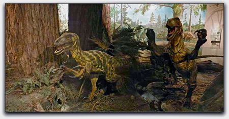 california academy of sciences, natural history museum, velociraptors