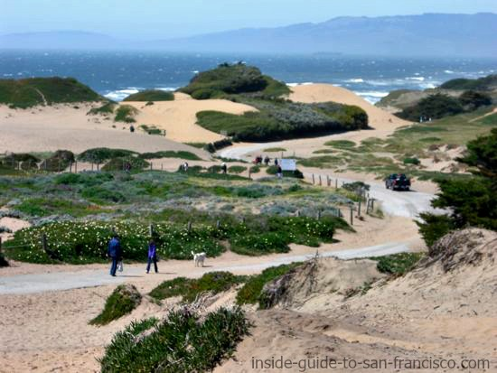 path at fort funston towards ocean beach