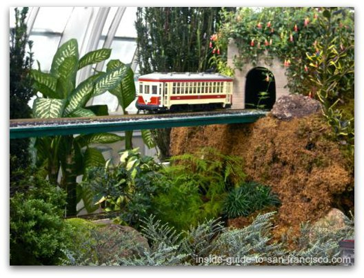 sf trolley, san francisco conservatory of flowers