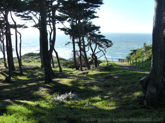 grounds above the sutro baths