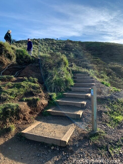 Rustic stairway to climb one of the Twin Peaks