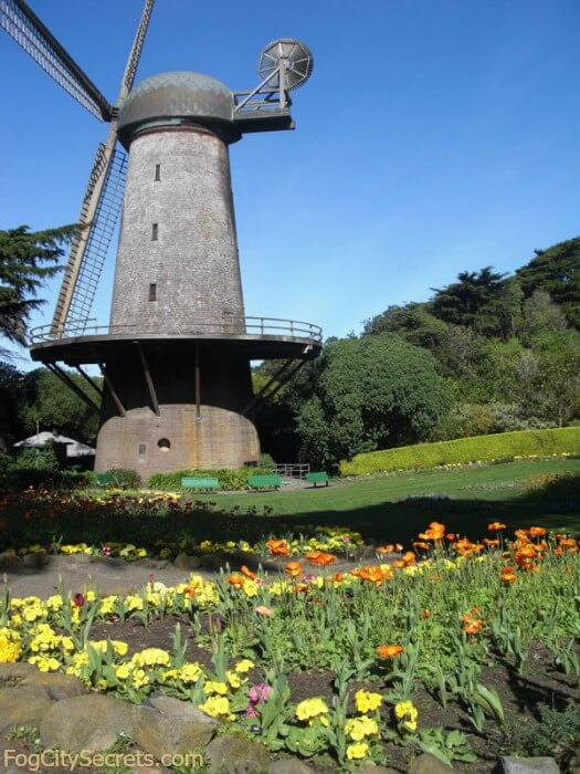 Dutch Windmill and Tulip Garden, Golden Gate Park