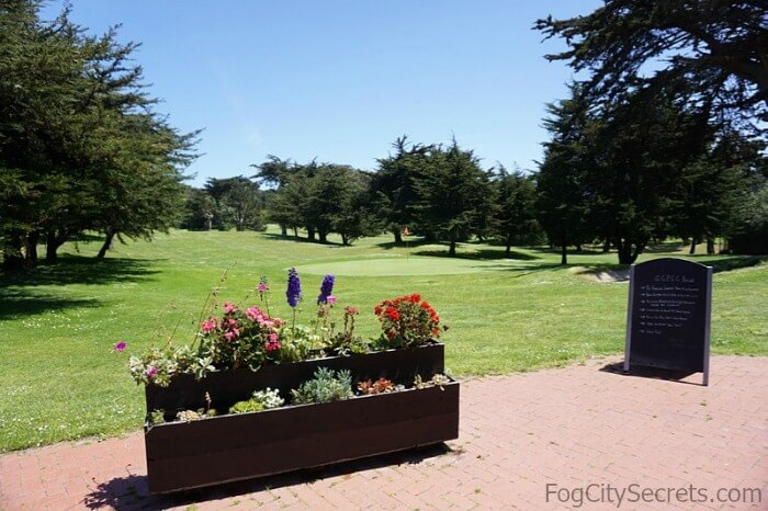 Fairway and patio, Golden Gate Park golf course.
