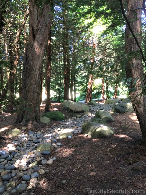 Redwoods and dry stream bed in the AIDS Memorial Grove, Golden Gate Park