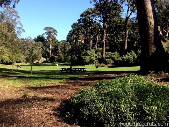 Picnic areas, Golden Gate Park