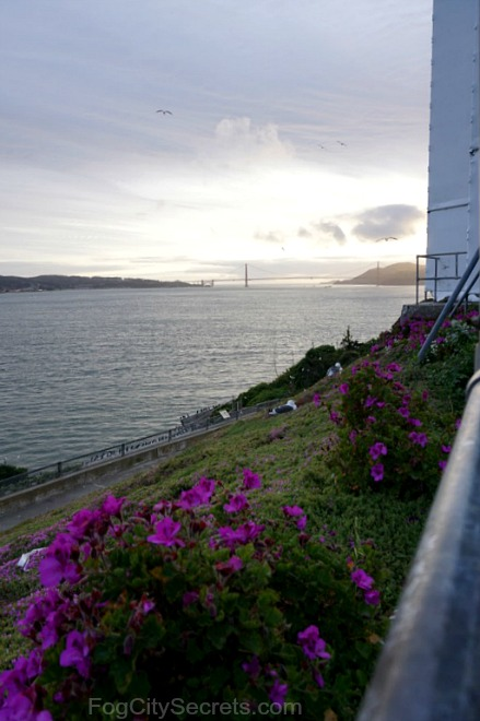 alcatraz night tour, golden gate bridge view at sunset