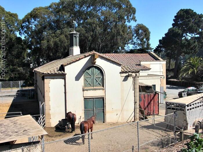Golden Gate Park stables