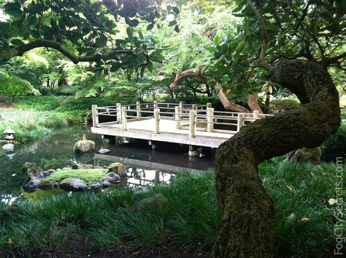 Moon Viewing Garden, San Francisco Botanical Garden