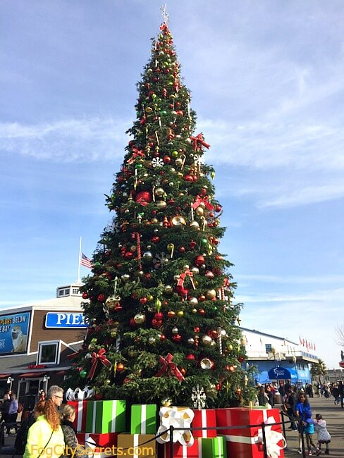Christmas tree at Pier 39, San Francisco