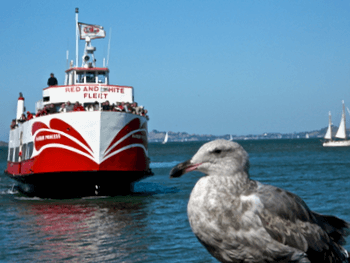 Red and White Ferry at Fisherman's Wharf
