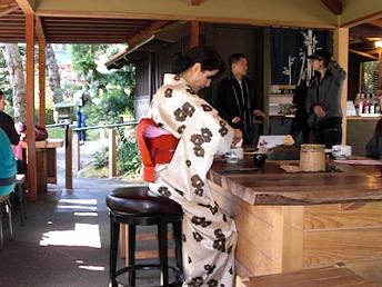 Tea ceremony at Japanese Tea Garden