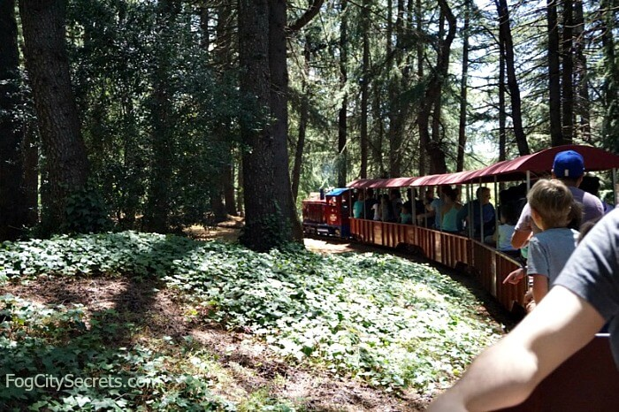 Train ride through the woods at Train Town in Sonoma
