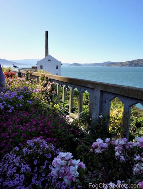 Flower garden on Alcatraz Island and Power Station