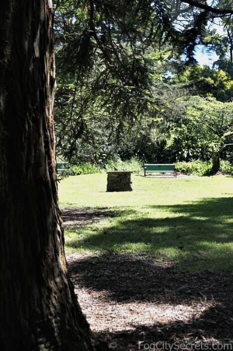 Sundial in meadow, Fuchsia Dell, Golden Gate Park