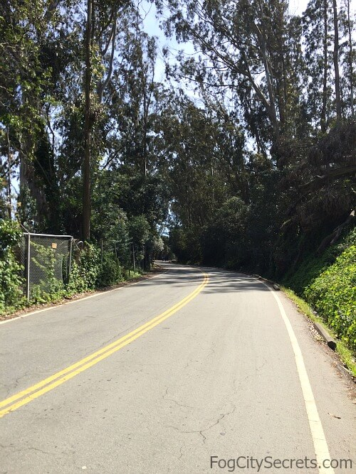 View of the hill on Long Avenue, the bike route up to the Battery East Trail and the Golden Gate Bridge.