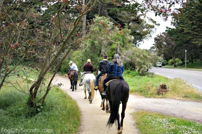 Horseback riding in Golden Gate Park, line of horses